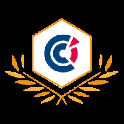 Trophées du Commerce France-Suisse